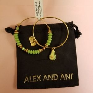 Alex and Ani Color infusion Bracelet Set of Two